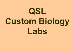 Custom Biology Labs